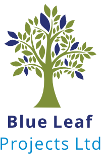 Blue Leaf Projects Limited